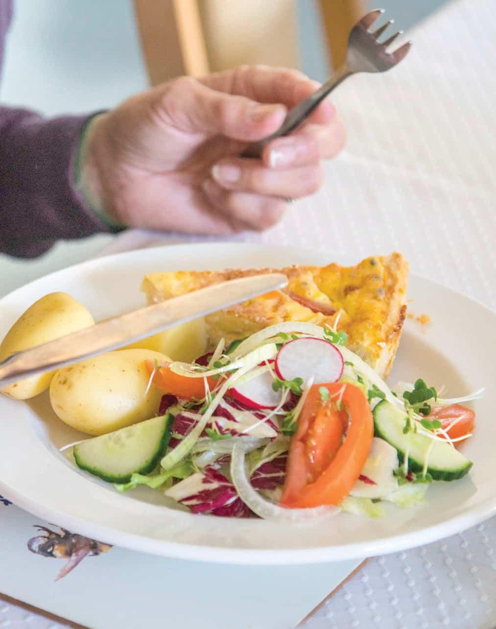 Nutrition - Omlette meal